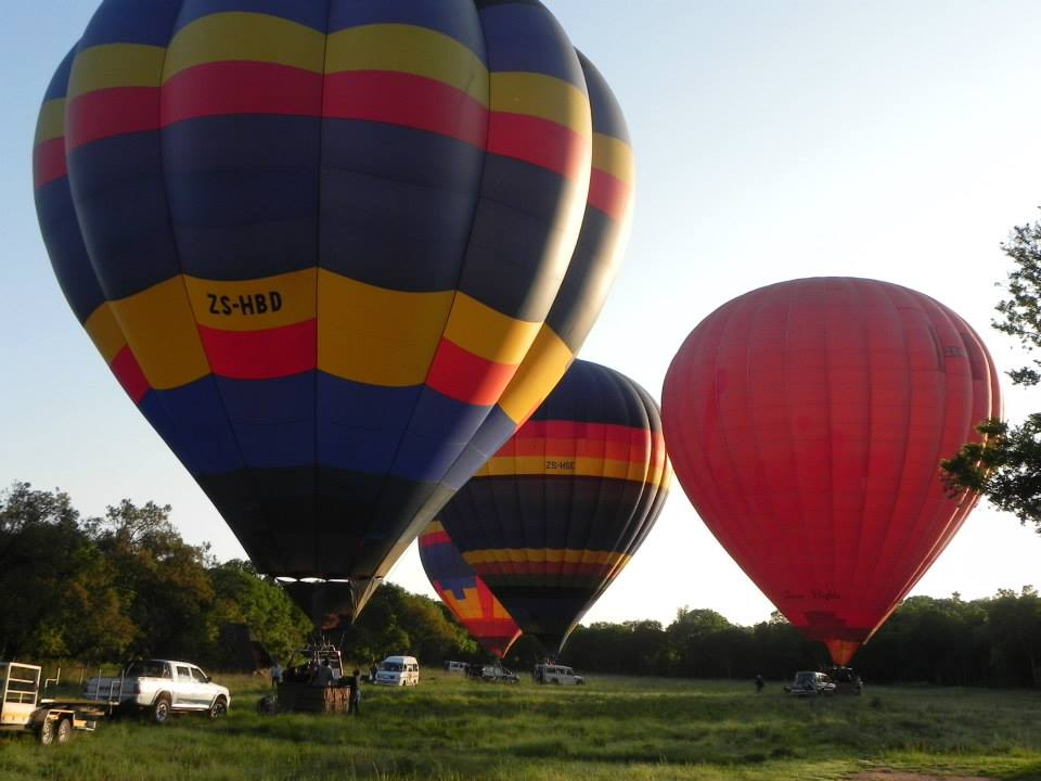 Hot Air Balloons taking off for a morning flight.