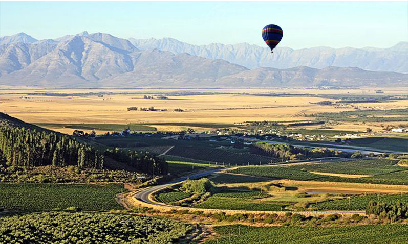 Glide over Riebeek Valley from the saftey of a hot air balloon.
