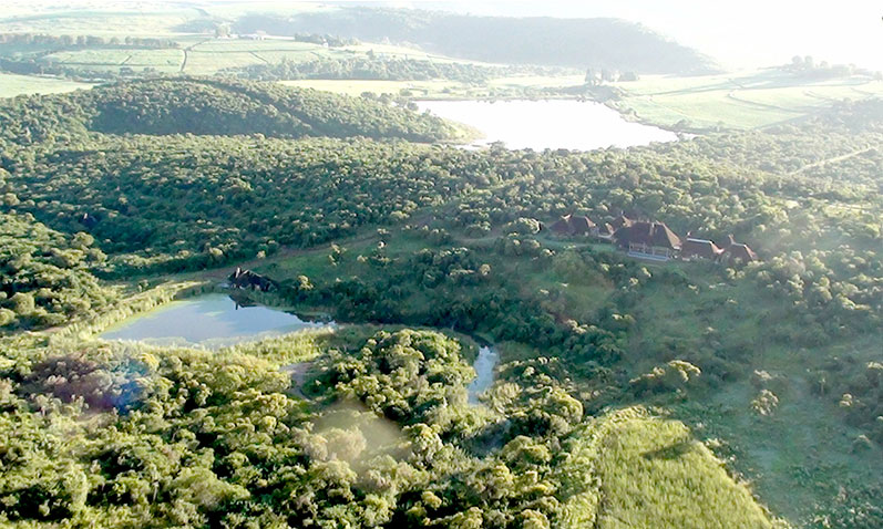 Fly over the Tala game reserve in a hot air balloon.