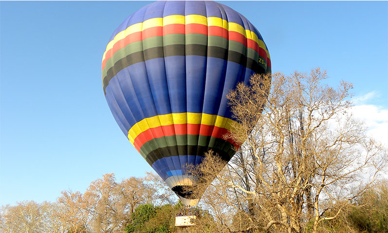 Fly over the tree tops of Toadbury Hall in a hot air balloon.